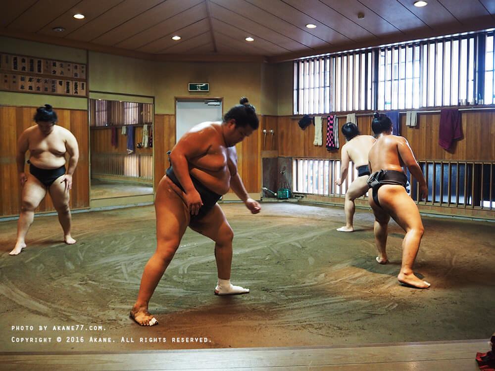 sumo2