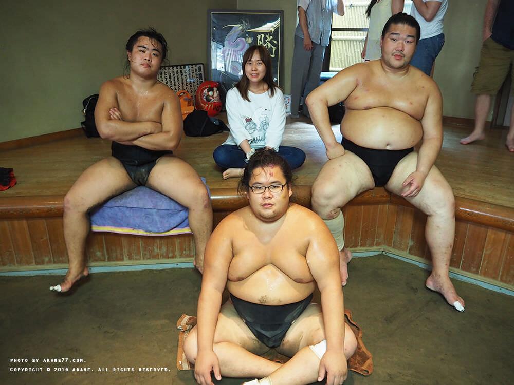 sumo13