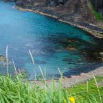 禮文島 澄海岬2