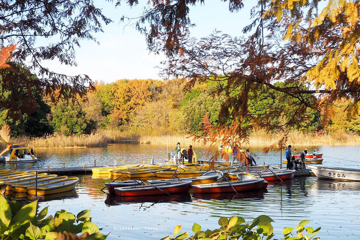 國營昭和紀念公園划船
