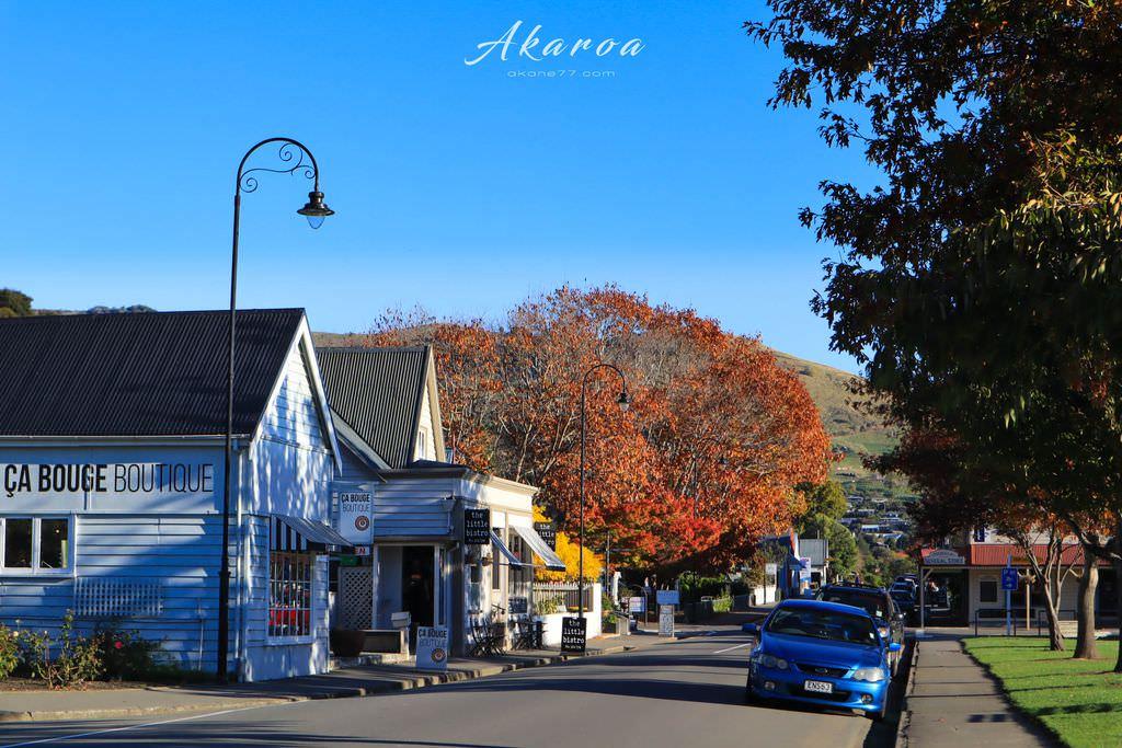 紐西蘭南島旅行景點akaroa