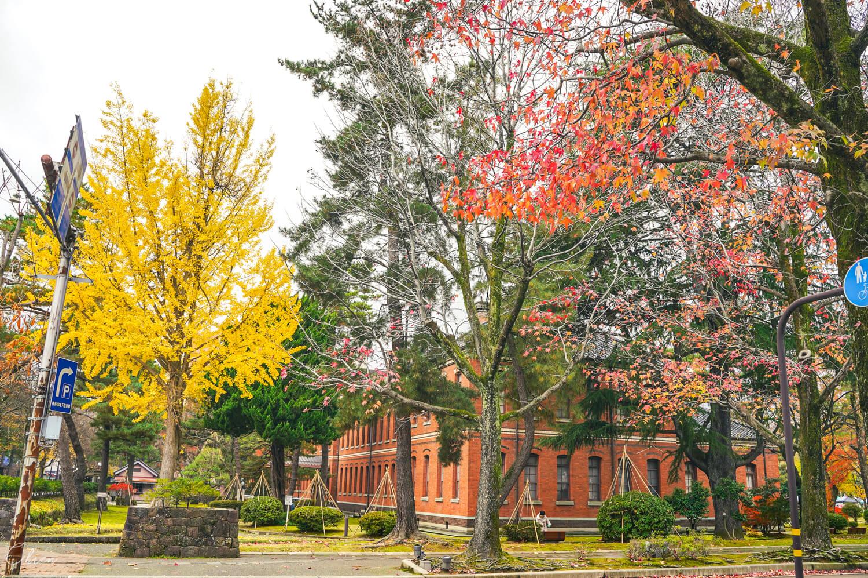 金澤自助旅行 秋天風景