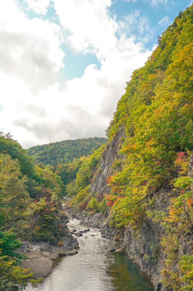 北海道札幌景點 定山溪賞楓楓葉