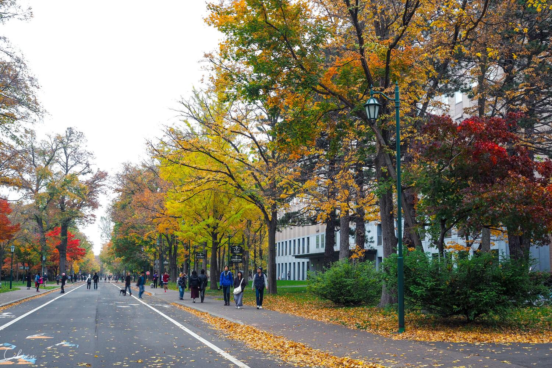 近札幌車站!北海道大學