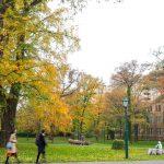 札幌景點北海道大學