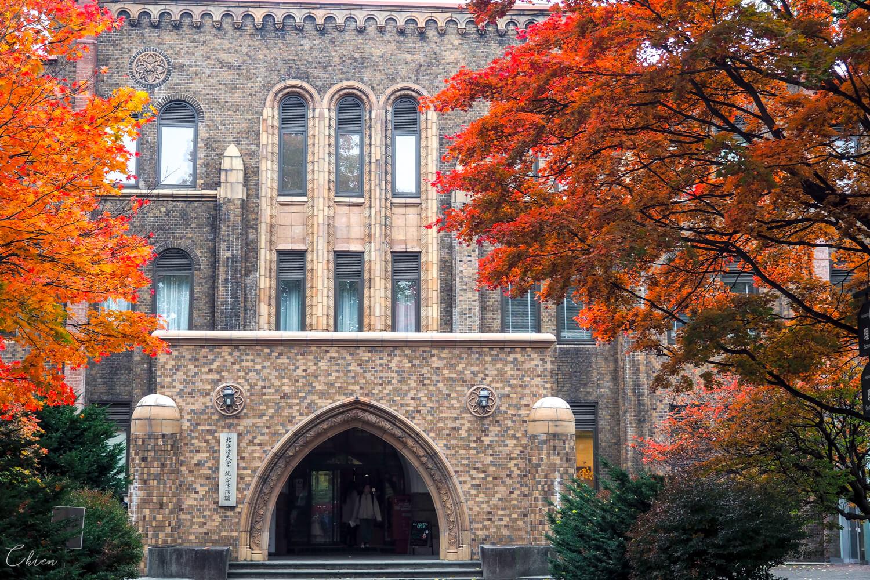 札幌景點 北海道大學綜合博物館
