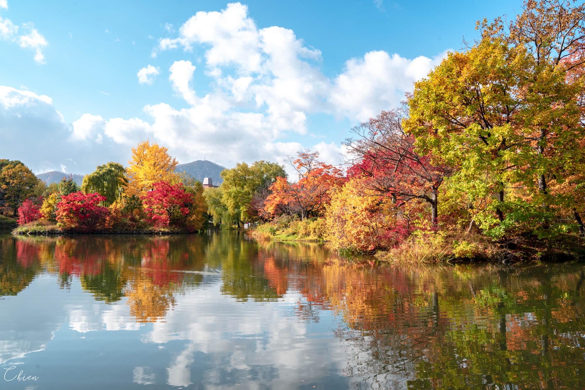札幌景點中島公園 菖蒲池