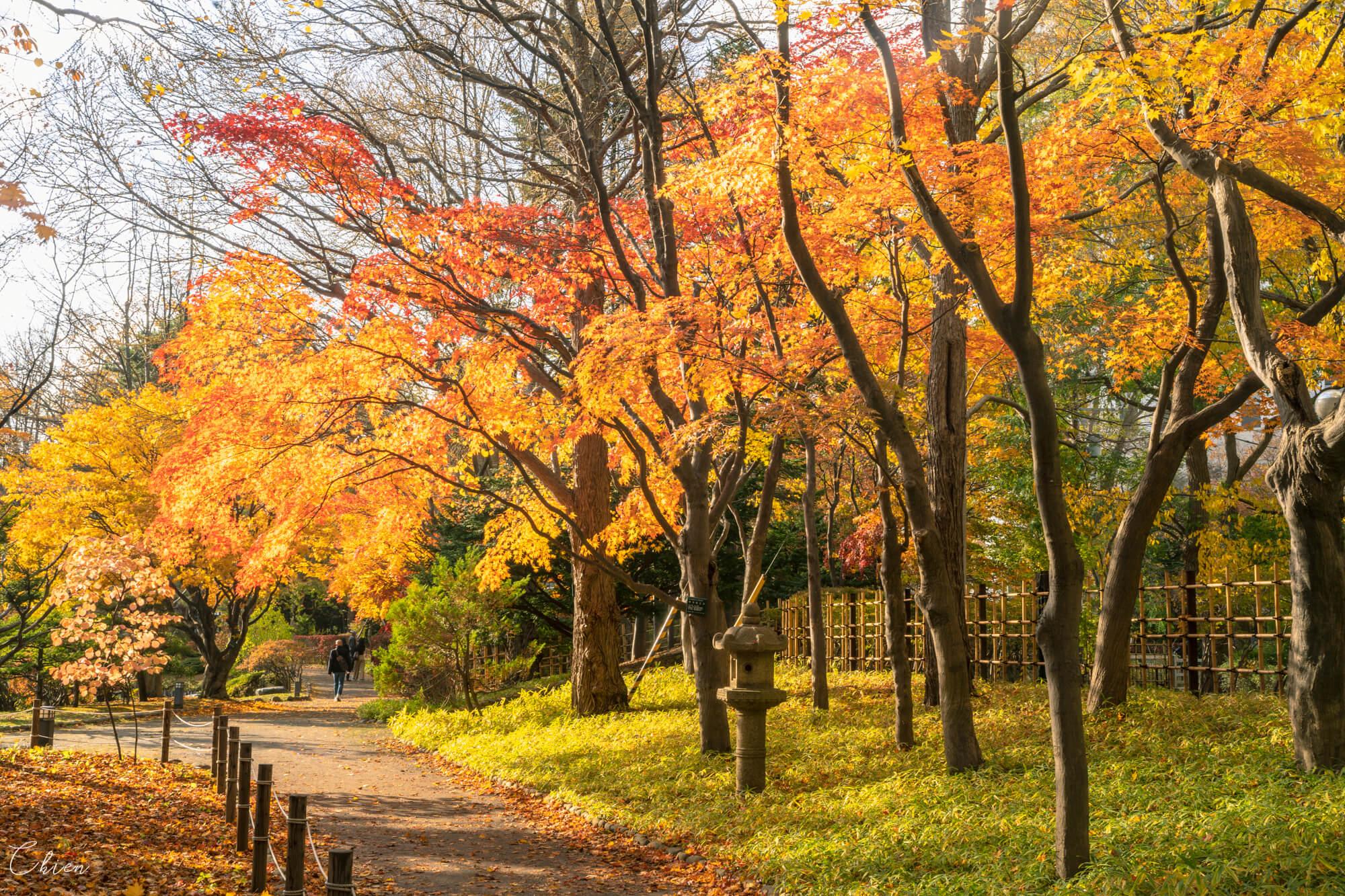 北海道 中島公園日本庭園