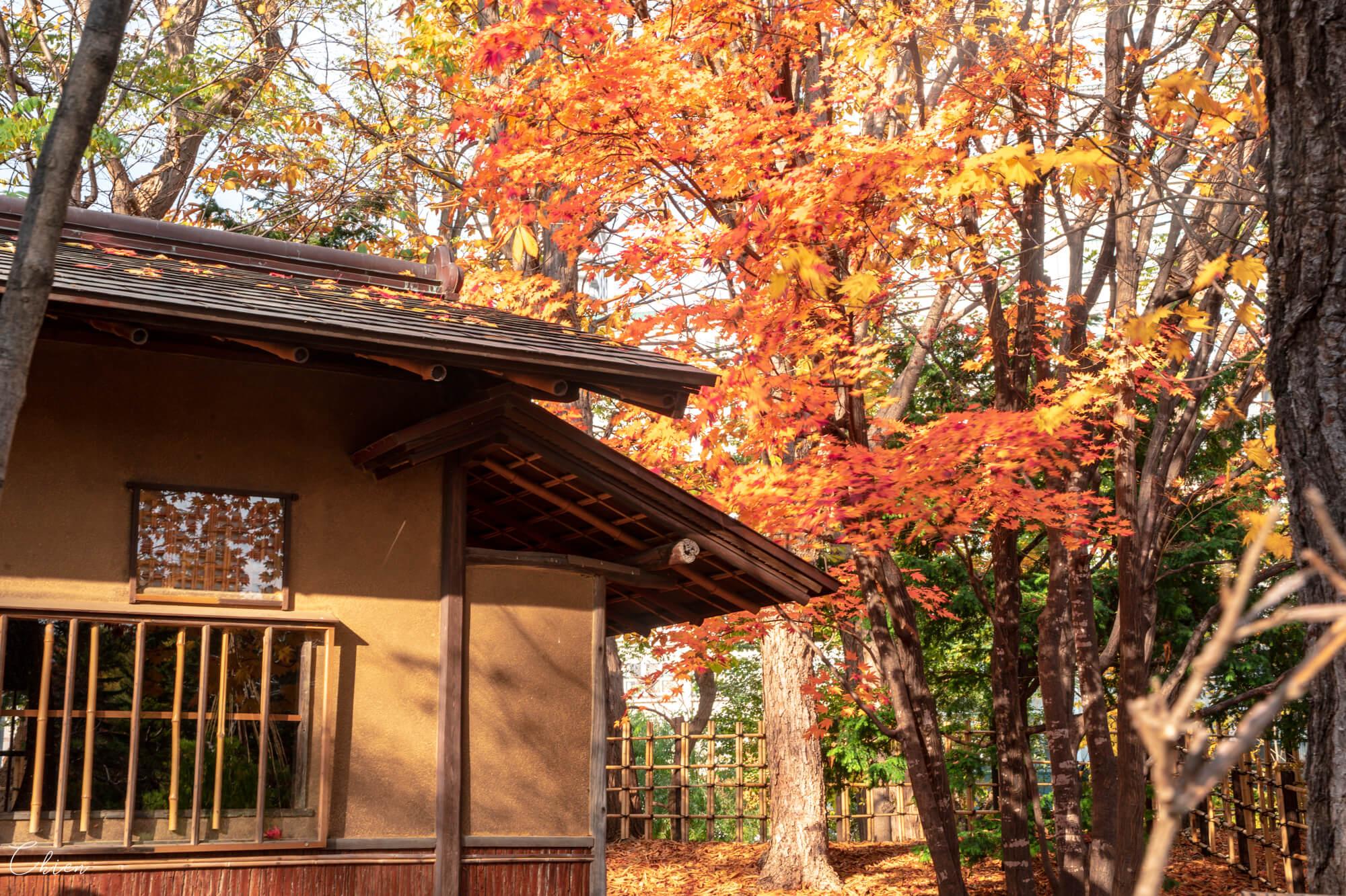 北海道 中島公園日本庭園八窓庵