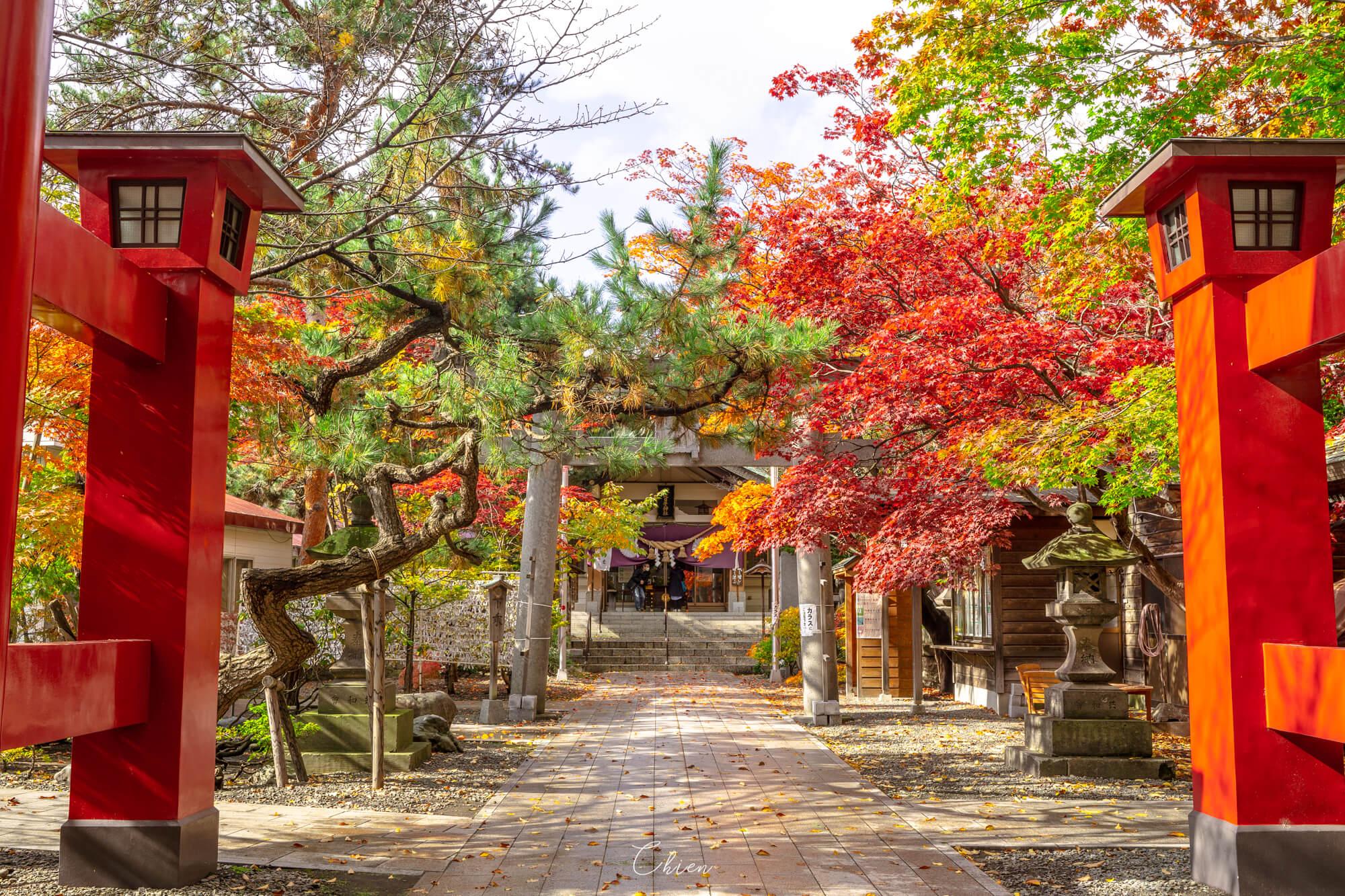 北海道札幌 中島公園彌彥神社賞楓
