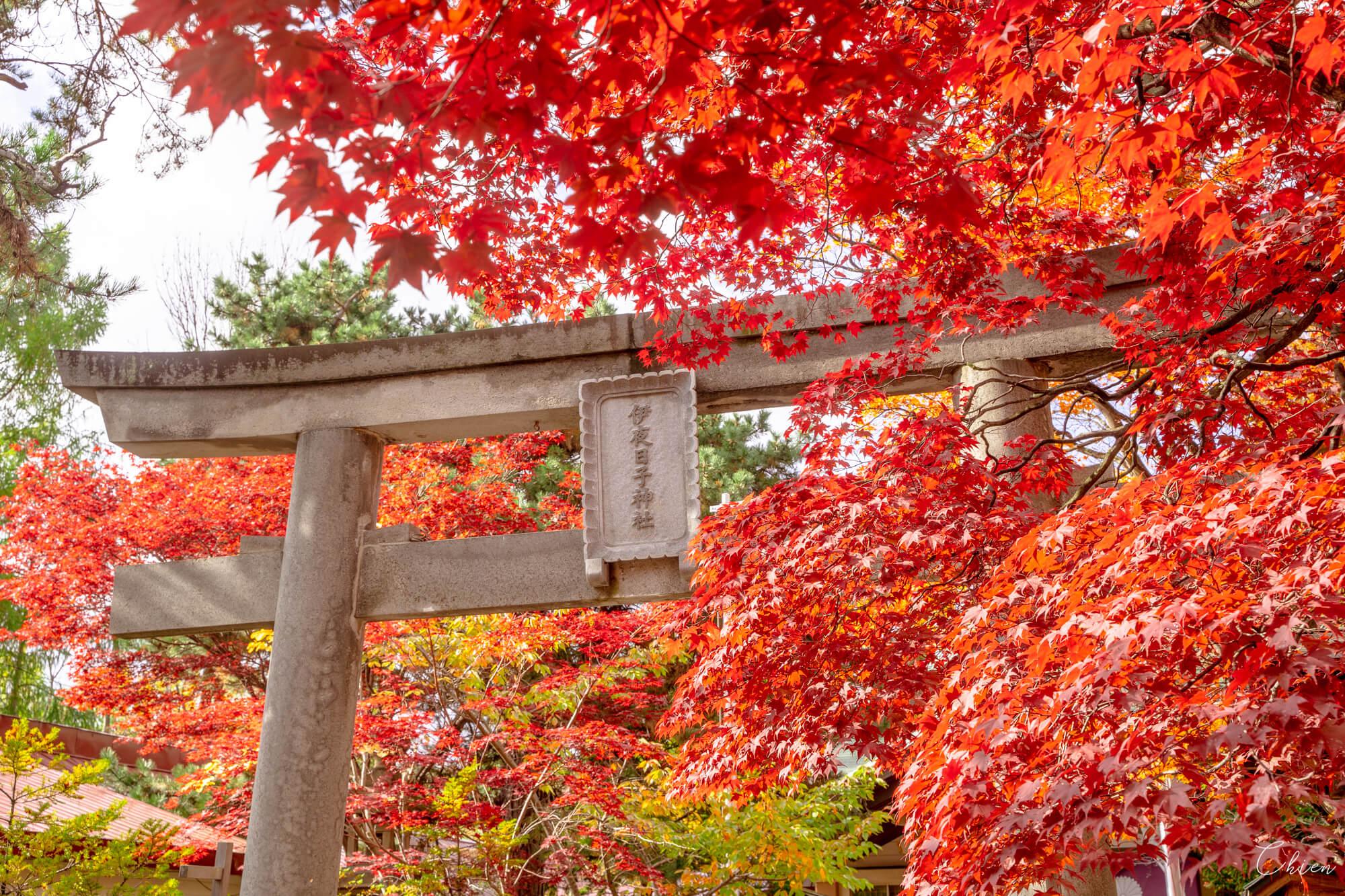 北海道札幌 中島公園彌彥神社