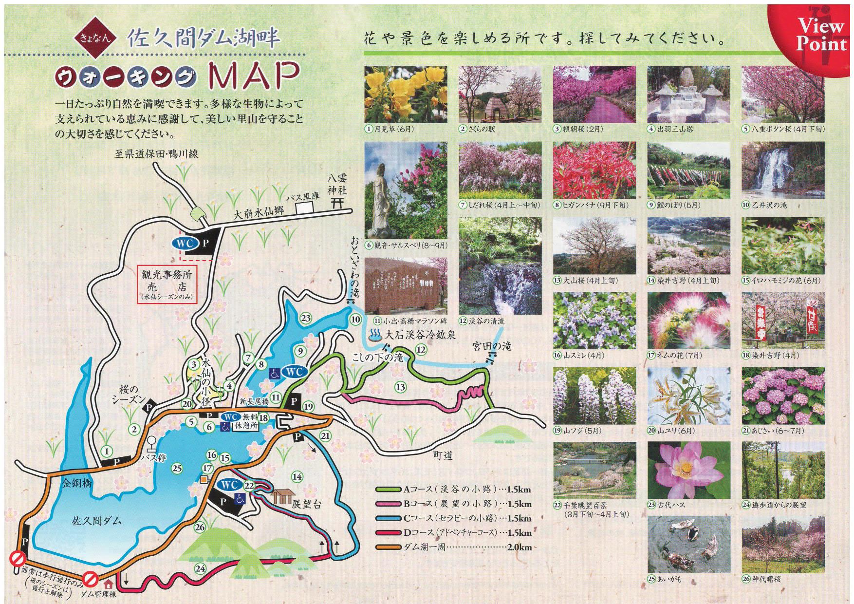 千葉賞花景點 佐久間湖水庫
