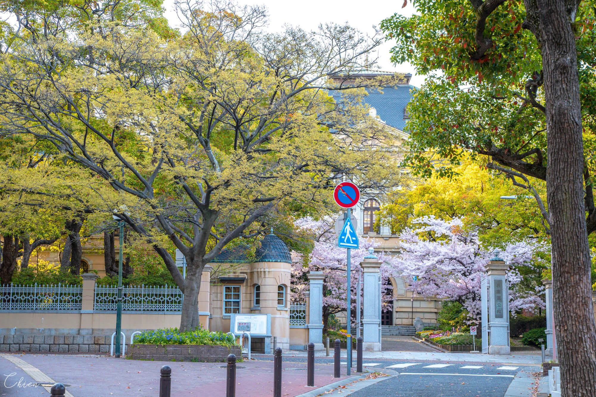 神戶元町三宮麵包 Pane Ho Maretta 櫻花景點