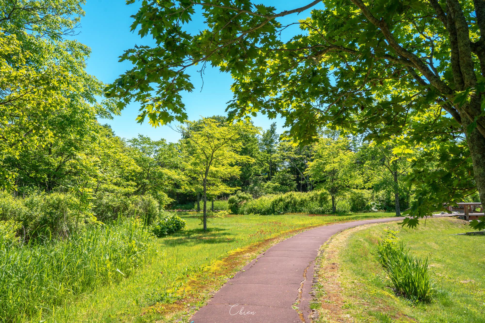 北海道道東 摩周溫泉道路休息站 散步