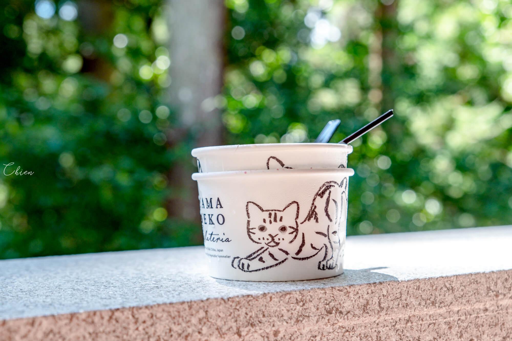 千葉 養老溪谷 山貓gelato冰淇淋