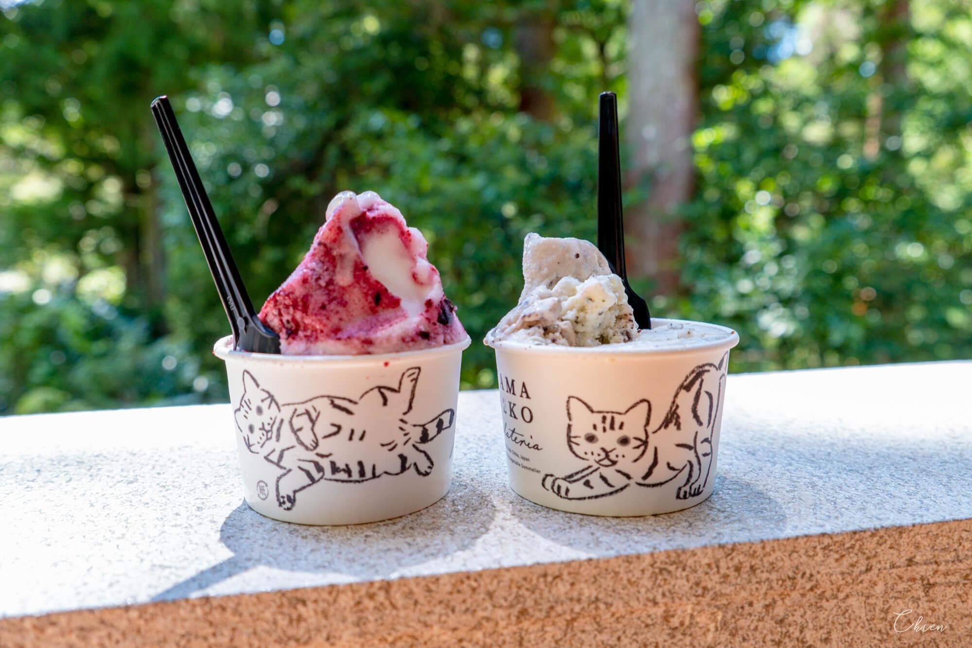 千葉養老溪谷美食 山貓gelato 義式冰淇淋2