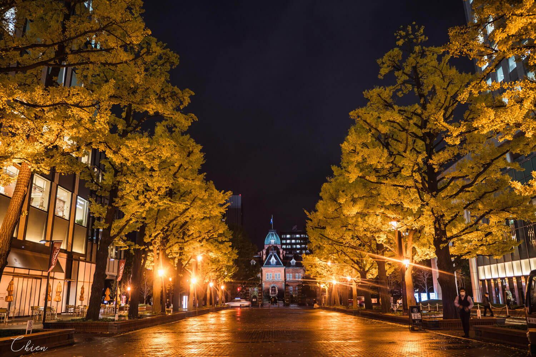 北海道札幌「銀杏景點」推薦 北海道廳舊本廳舍夜晚