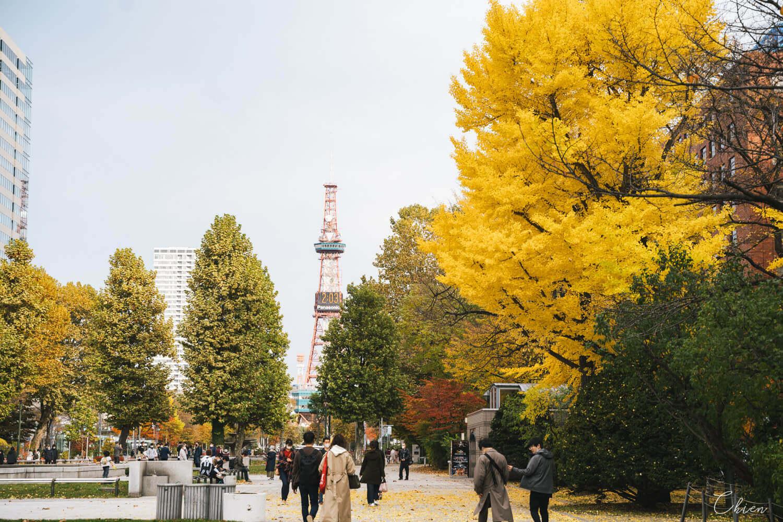 北海道札幌「銀杏景點」推薦 秋季 大通公園