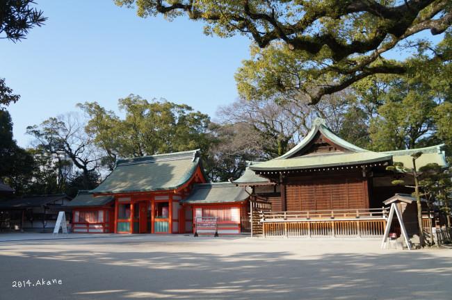 【九州福岡】博多早晨散策:住吉神社、柳橋連合市場